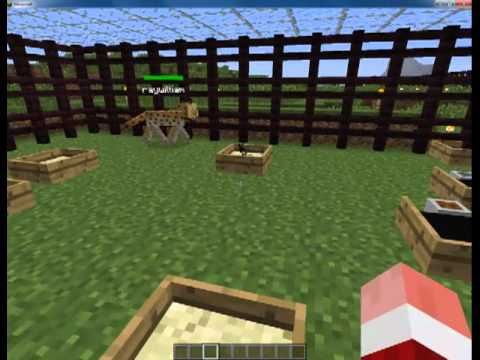 Minecraft Animal Mod my World