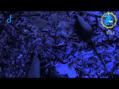 Bandhan Saari Umar Humein Sang Rehna Hai - Episode 26  - October 21, 2014 - Episode Recap video