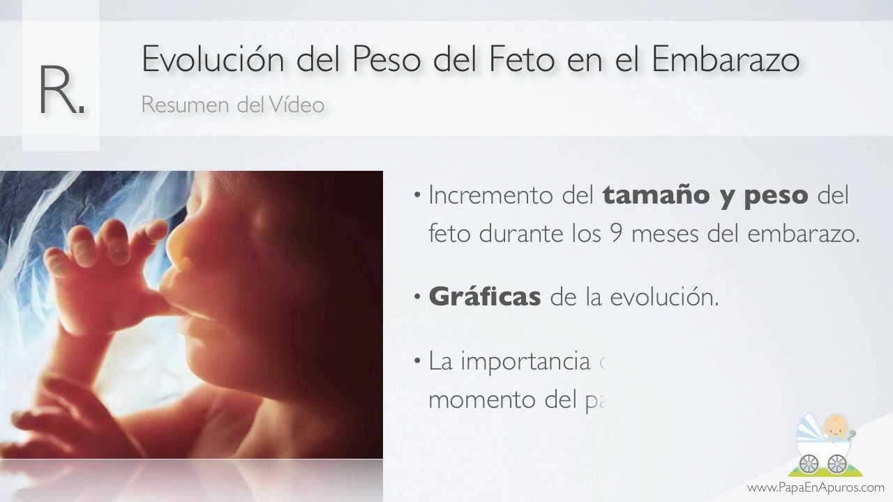 Evoluci n del peso del feto en el embarazo embarazo semana a semana youtube - Cuanto debe pesar un bebe de 4 meses ...