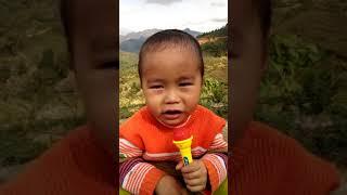 THÁNH HÁT CA SI NHÍ COVE NHẠC CỰC HAY NĂM 2018 Xin giới thiệu giọng ca nhí đến từ núi