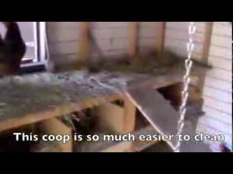 Convert Existing Shed Into Chicken Coop For Low Cost Youtube