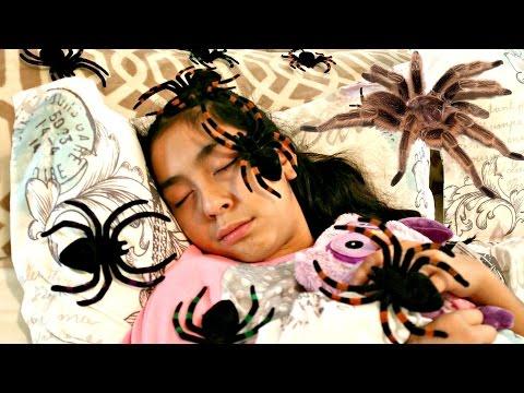 HALLOWEEN NIGHTMARE!! GIANT SPIDERS ATTACK Girl |B2cutecupcakes