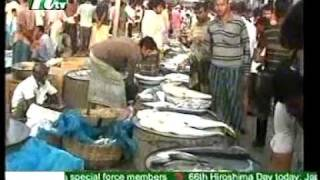 Bangladesh : Now Fishing In Formalined Ice-NTV-06-08-2011.mpg