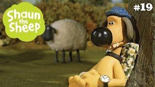 Shaun Shoots the Sheep - Những Chú Cừu Thông Minh