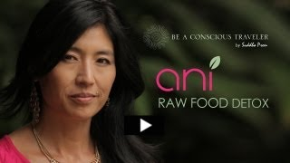 ANI PHYO | RAW FOOD DETOX