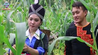 hmong New song 2018 tub huas xyooj kwv txhij