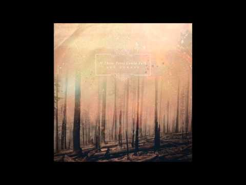 If These Trees Could Talk - Barren Lands Of A Modern Dinosaur