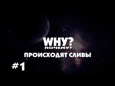 """""""Почему?"""" происходят сливы #1"""