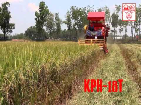 รถเกี่ยวข้าวไวไฟจอมพลัง เกษตรพัฒนา Kasetphattana Model KPH-18T Rice Combine Harvester