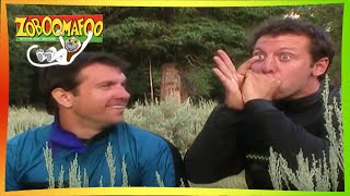 🐒Zoboomafoo 125 - Great Singers | HD | Full Episode 🐒🐦