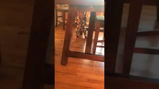 Baby dance twerk