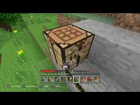 Minecraft survival world #1