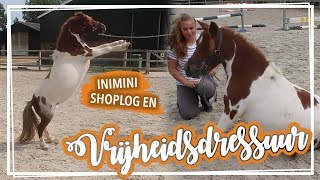 Cookie steigert op commando & MINI shoplog! VLOG#4