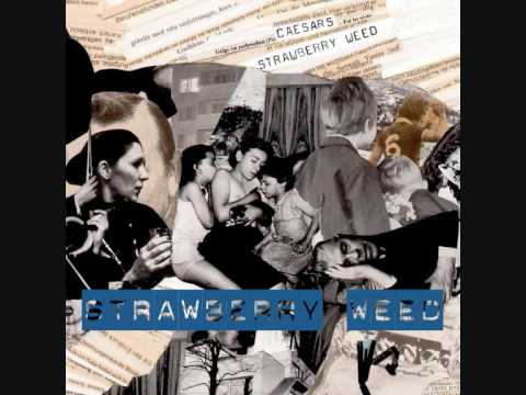 Caesars - Strawberry Weed