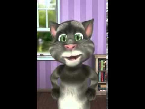 Tom el gato wapsap