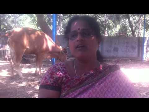 Tamil national anthem by kannadasan