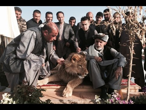 Hashmat karzai private zoo in Kandahar