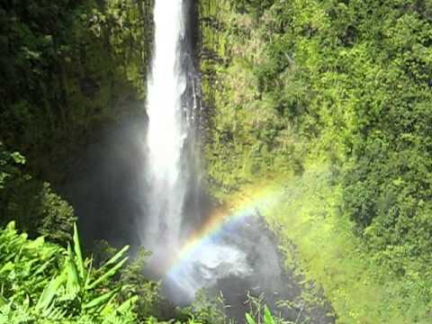 hawaii rejser - Nicksamerika.dk - akaka falls