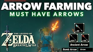 Arrows - Where to Find and Farm Various Powerful Arrows in Zelda Breath of the Wild