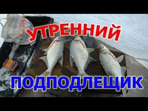 Утренний клев подлещика декабрь 2017, не Первый лед