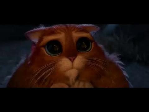Chat potté [Shrek 4]