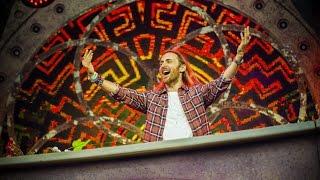 Tomorrowland Belgium 2016 | David Guetta