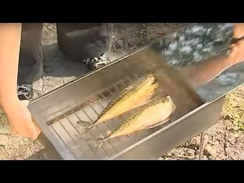 Коптильня холодного копчения видео на ютубе