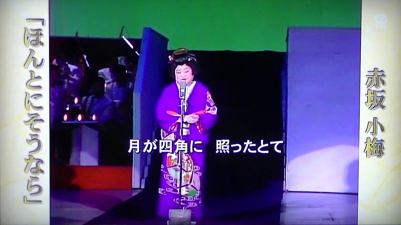 赤坂小梅の画像 p1_24