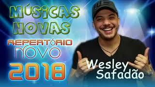 Tem que Respeitar Wesley Safadão Fervereiro 2018