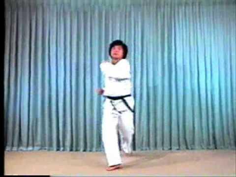 TaeKwonDo Basic Kicks (2/2)
