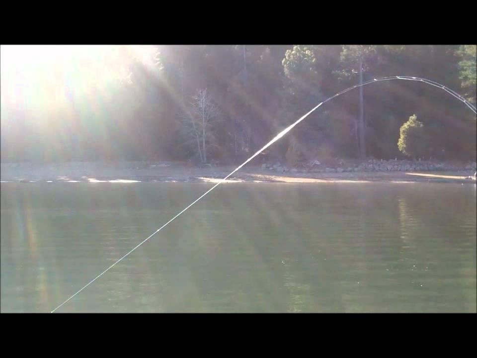 Lake almanor winter 2011 youtube for Lake almanor fishing report