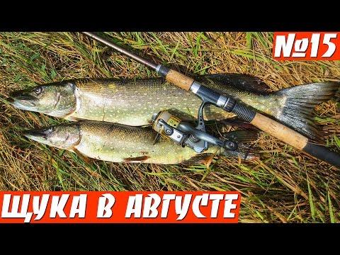 рыбалка на спиннинг для начинающих на щуку видео