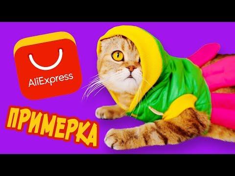 Кошачья ПРИМЕРКА! Одежда для кошки С АЛИЭКСПРЕСС!