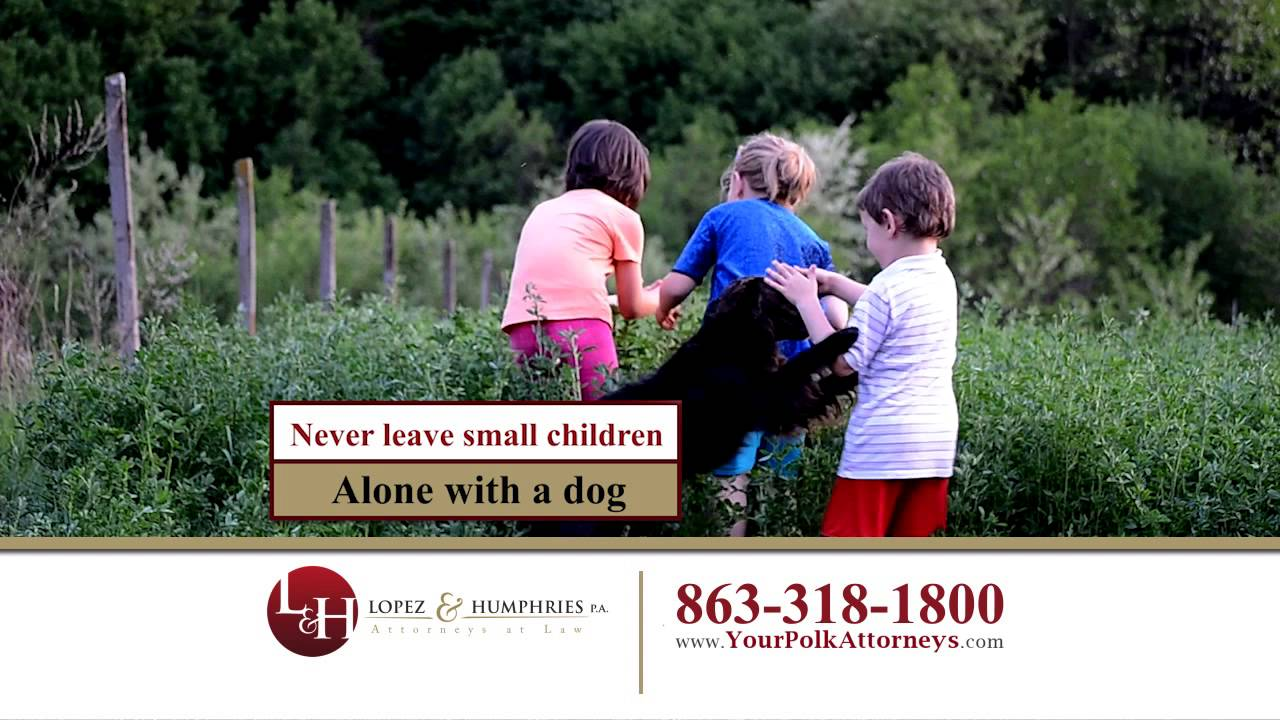 Dog Bite Attorney Lakeland