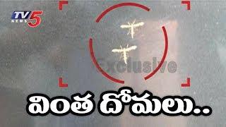 విమానం ఆకారంలో వింతదోమలు..! | White Mosquitoes In Kurnool District