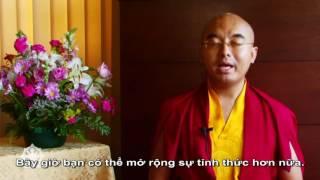 Hướng dẫn hành thiền do thiền sư Tây Tạng hướng dẫn