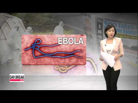 Path of the Ebola virus infection