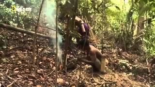 Man Hunt Death Blow  National Geographic Nature Documentary