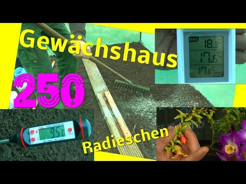 Gewächshaus Beet vorbereiten / Temperatur Check im Boden und Luft