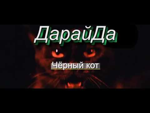 Дарайда - Черный кот