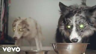 Watch Reptar Houseboat Babies video