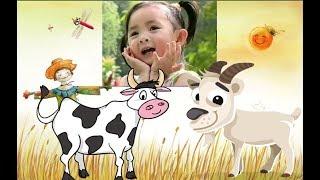 Con Bò -Con Dê ăn cỏ♥ Bé Xuân Mai hát Con Cò Bé Bé Cả -  Nhà Thương Nhau