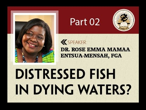DISTRESSED FISH IN DYING WATERS 2