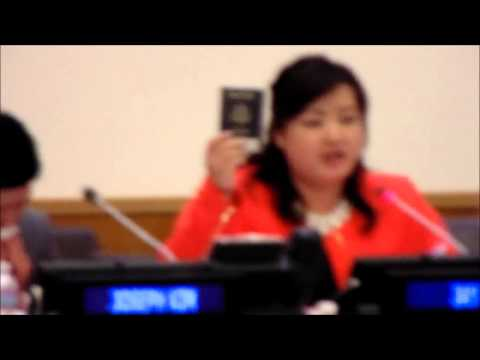 North Korea Intervenes in  Human Rights Event of US &  RoK at UN, Heckler Yells