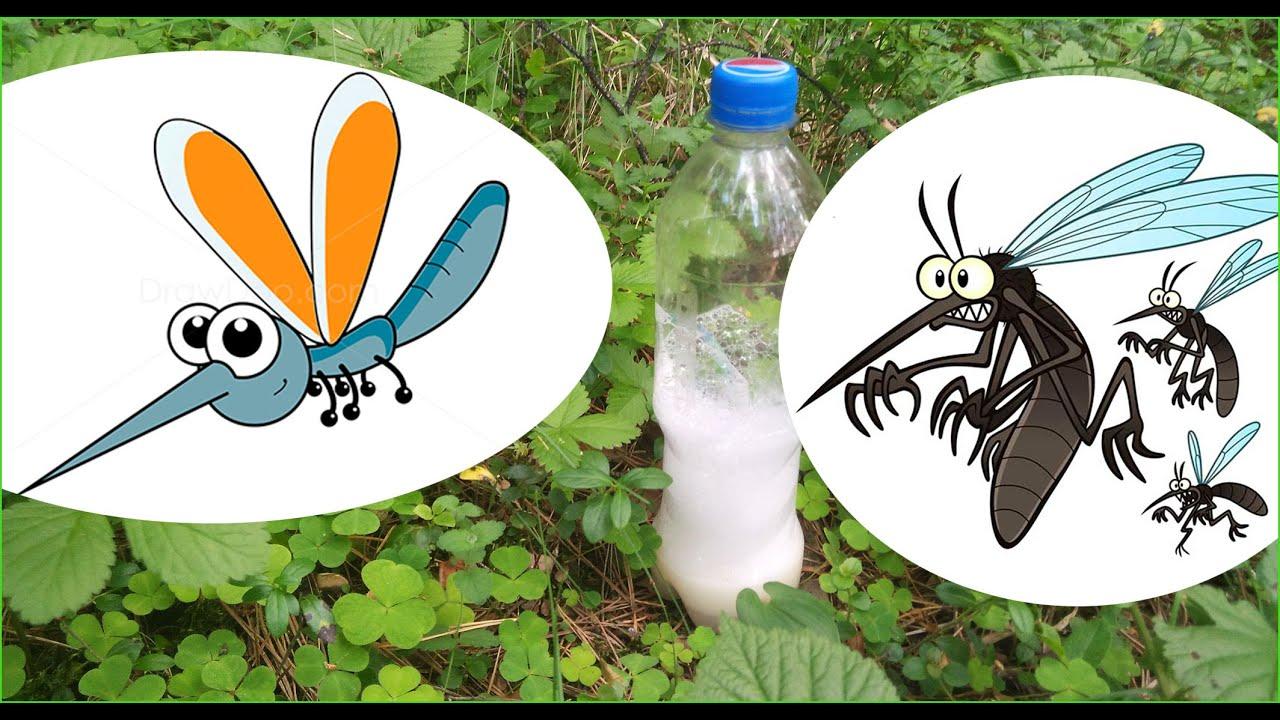 Натуральные средства от комаров и других насекомых своими 15