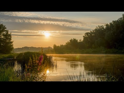 Григ Эдвард - Песня Сольвейг