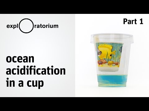 Model ocean acidification, diffusion, and the effects of climate change - Science Snacks activity