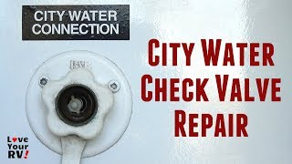 City Water Check Valve Disassembly and Repair