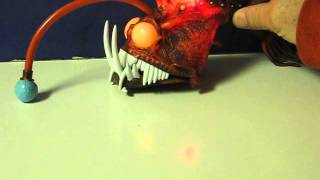 Play 7 bizarre facts about anglerfish for Nemo light fish