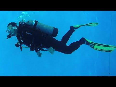 Fiz minha primeira aula de mergulho! #Sub 10